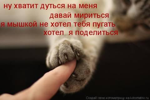 http://sf.uploads.ru/t/bIvun.jpg