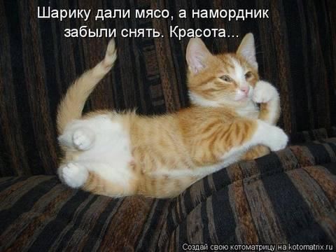 http://sf.uploads.ru/t/bdEYu.jpg
