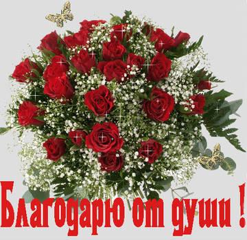 http://sf.uploads.ru/t/eYIzx.jpg