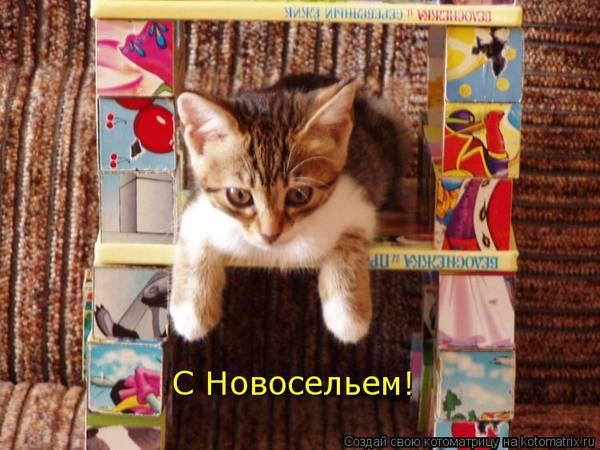 http://sf.uploads.ru/t/hela0.jpg