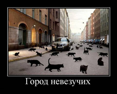http://sf.uploads.ru/t/nT3kU.jpg