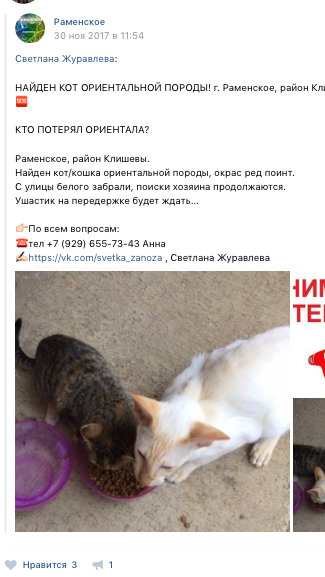 http://sf.uploads.ru/t/oGme1.jpg