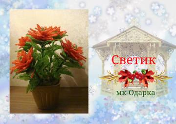 http://sf.uploads.ru/t/pmc1F.jpg