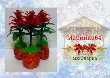 http://sf.uploads.ru/t/q7BD8.jpg